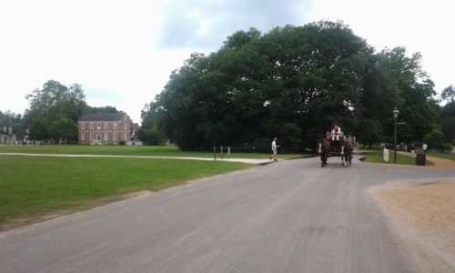 32. Colonial Williamsburg - carriage & horse