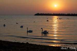 litoral-Romania[1]