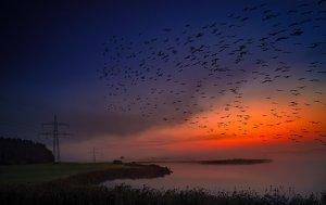 sunrise-2883231__340
